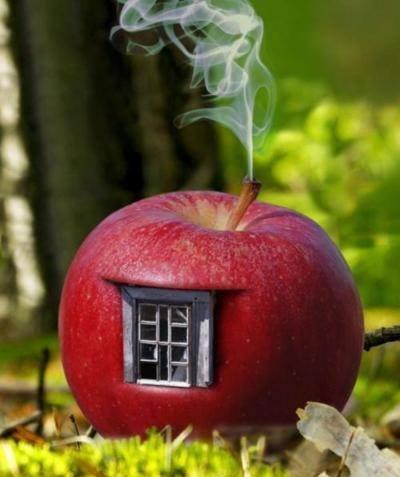 casa de permacultura