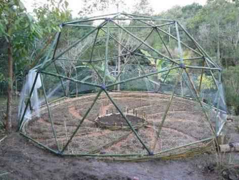 geodesica+bambu