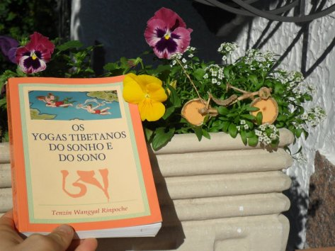 os yogas do sonho e do sono, tenzin wangyal Rinpoche