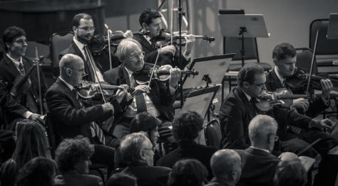 violinos da orquestra OSPA