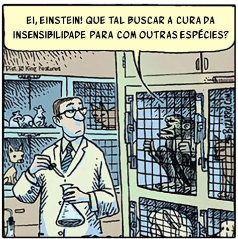testes em animais, direitos animais