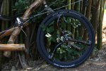 bamboo-spokes-on-a-recumbent-bamboo-bike-hand-made-by-artbikebamboo-bambu