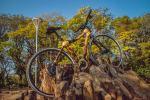 bamboo-bike-hand-made-by-artbikebamboo-bicicleta-de-bambu-personalizada