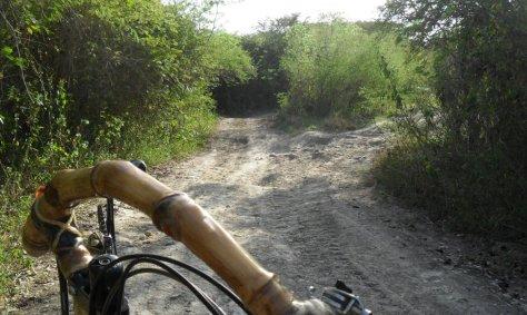 57 buraqueira brana no caminho a cayo sabinal uba