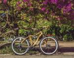 bamboo-bike-hand-made-with-bamboo-bambu-bike-da-artbikebamboo-personalizada