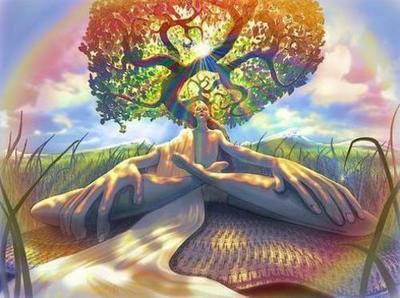 meditação na árvore